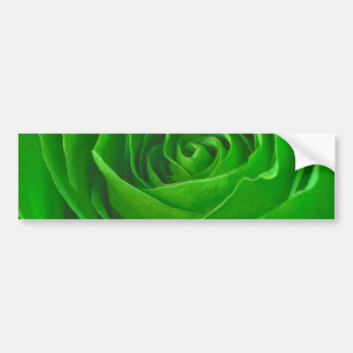 Abstract Green Rose Center Photograph Bumper Stickers
