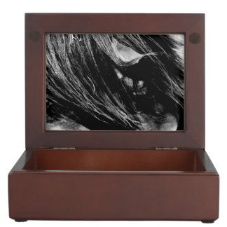 Abstract Horse Mane Photograph Memory Boxes
