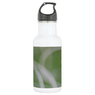 Abstract Image of Green Palm Leaves Water Bottle