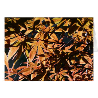 Abstract & japanese Maple Card