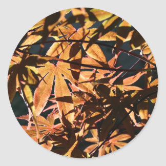 Abstract & japanese Maple Classic Round Sticker
