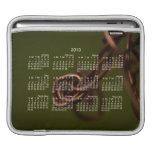Abstract Junk; 2013 Calendar iPad Sleeves