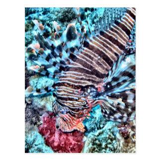 Abstract Lion Fish Postcard