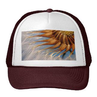 Abstract Looking Dandelion Blossom Trucker Hat