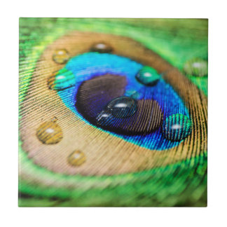 Abstract Macro Peacock Peafowl Feather Drops Tile