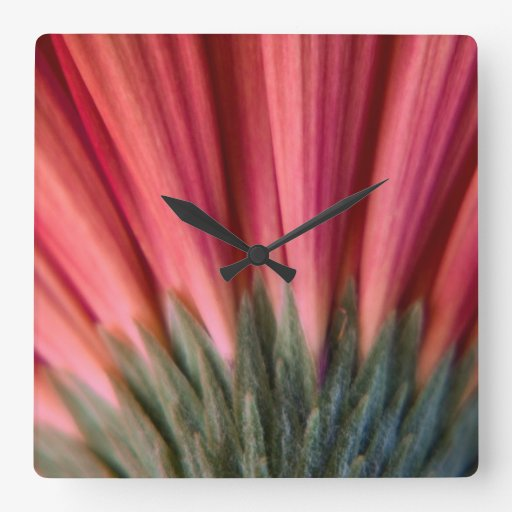 Abstract Macro Red and Pink Gerbera Flower Square Wall Clocks
