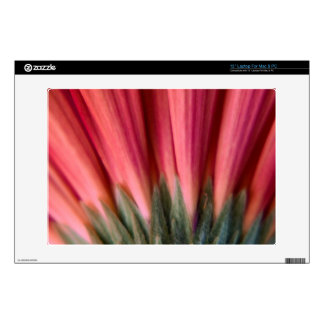 "Abstract Macro Red and Pink Gerbera Flower Decal For 13"" Laptop"