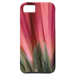 Abstract Macro Red and Pink Gerbera Flower iPhone SE/5/5s Case