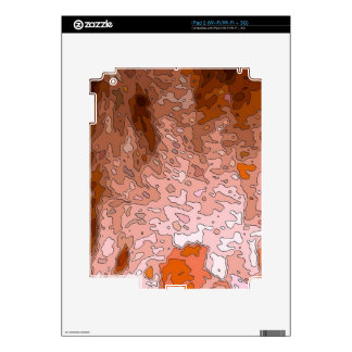 abstract maps, terra decal for the iPad 2