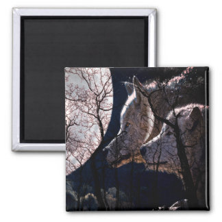 Abstract moon forest wolf tree fridge magnet