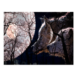Abstract moon forest wolf tree post card