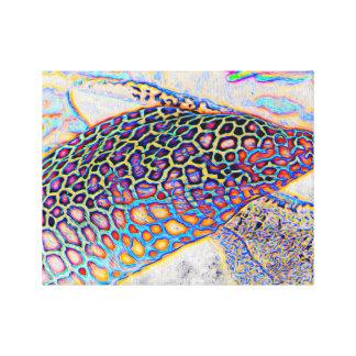 Abstract Moray Canvas Print