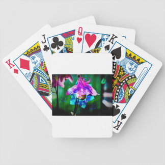 Abstract nature Akeley Bicycle Playing Cards