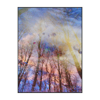 Abstract Nature Photography Canvas Print