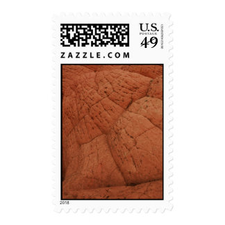 Abstract Nature Postage