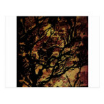 Abstract nature postcards