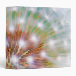 Abstract of dandelion seed head binder