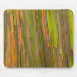 Abstract Of Eucalyptus Bark Mouse Pad