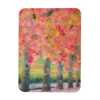 Abstract of Napa Valley trees Rectangular Photo Magnet
