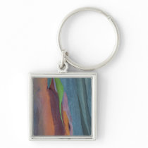 Abstract Of Rainbow Gum Tree Keychain