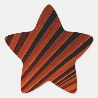 Abstract Orange Palm Frond Star Sticker
