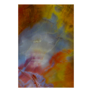 Abstract Petrified Wood close-up Poster