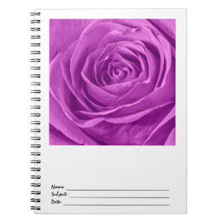 Abstract Photograph of an Orchid Colored Rose Note Book