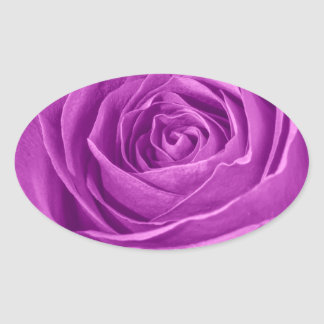 Abstract Photograph of an Orchid Colored Rose Oval Sticker