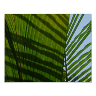 Abstract Photography Green Leaf Poster