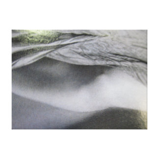 Abstract Photography in Shades of Gray and Green Canvas Print