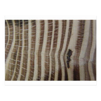 abstract picture of wood postcard
