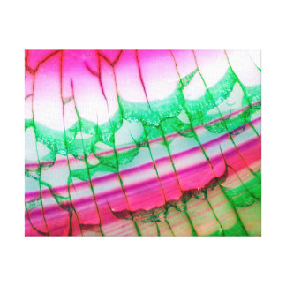 Abstract Pink Green Dragon Vein Agate Canvas