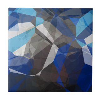 Abstract Polygons 253 Ceramic Tile
