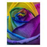 Abstract Rainbow Rose Customized Letterhead