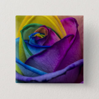 Abstract Rainbow Rose Pinback Button