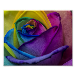 Abstract Rainbow Rose Poster