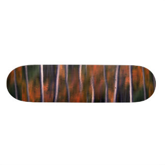 Abstract Reflection of autumn foliage in a beaver Skate Boards