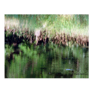 Abstract Reflection on the Water Postcard