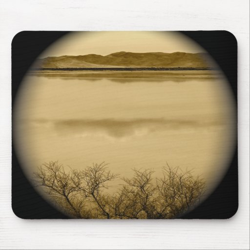 ABSTRACT REFLECTIONS WITH BRANCHES PHOTOGRAPHY MOUSEPADS