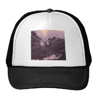 Abstract Spider  Web Hat