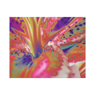Abstract Stargazer Lily Wrapped Canvas Stretched Canvas Prints