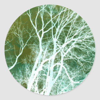 Abstract Tree Photography Classic Round Sticker