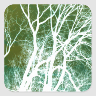 Abstract Tree Photography Square Sticker