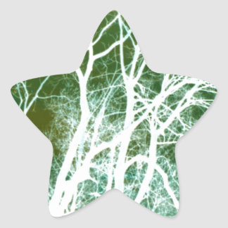 Abstract Tree Photography Star Sticker