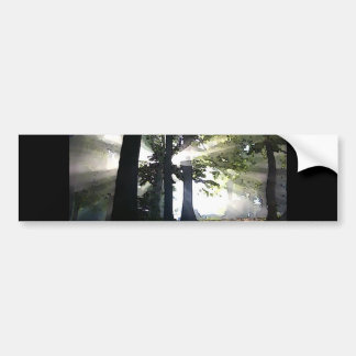 Abstract Trees Bumper Sticker