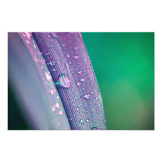 Abstract water drop art photo