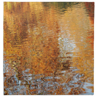 Abstract water reflections in autumn napkin