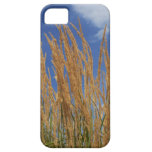 Abstract Wheat iPhone 5 Case