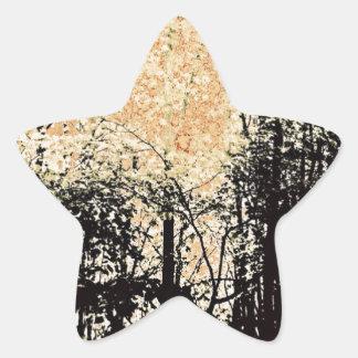 Abstract Wilderness View Star Sticker