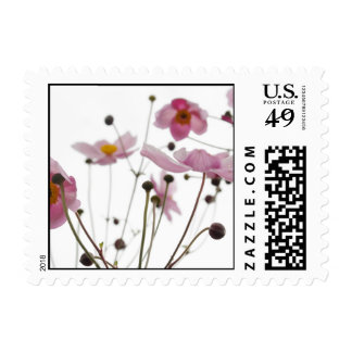 Abstract Wildflowers Postage